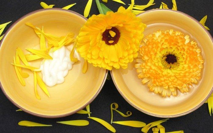 bild 5 hausmittel gegen pickel die wundersalbe aus ringelblumen. Black Bedroom Furniture Sets. Home Design Ideas
