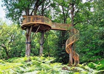 Trend Baumhaus: Von Kindheitsträumen in luftiger Höhe