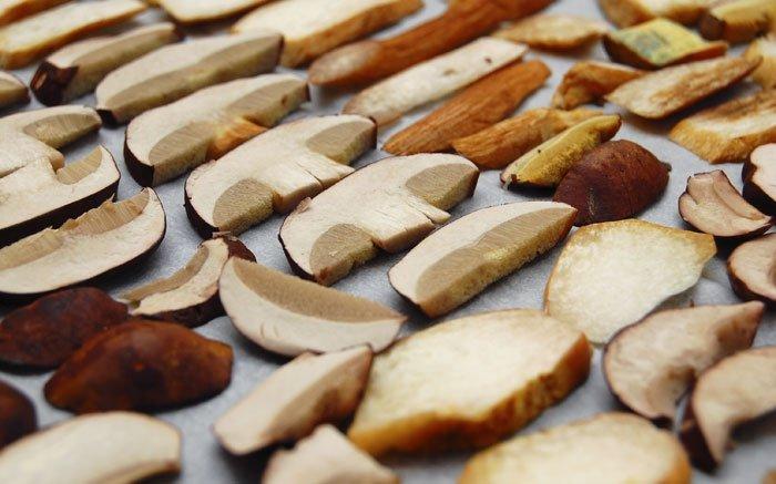 bild 6 schnell pilze trocknen im backofen haltbar machen