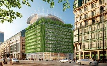 Aus grau wird grün: Das Botanic Center blüht auf