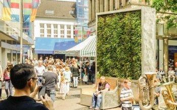 Wie eine Wand aus Moos das Stadtklima verbessert