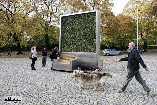 city tree moos filtert neben co2 auch stickoxide und feinstaub aus der luft. Black Bedroom Furniture Sets. Home Design Ideas