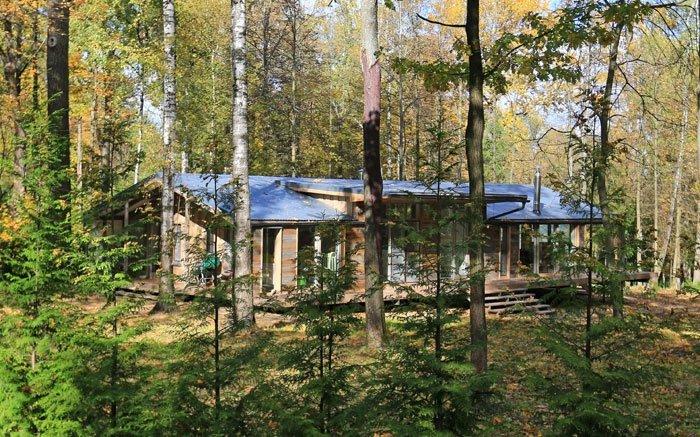 bild 3 kologisch bauen das fertighaus im wald hinter den b umen. Black Bedroom Furniture Sets. Home Design Ideas
