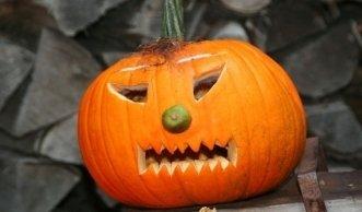 Bio-Kürbis schnitzen: Nachhaltiger Hingucker für den Herbst