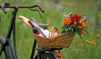 Bio-Picknick: leckere Ideen für Ihren «grünen» Picknickkorb