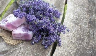 Naturkosmetik: Alle Gütesiegel und was sie bedeuten