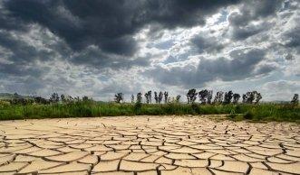Wie sich unser Ökosystem durch die Erderwärmung verändert