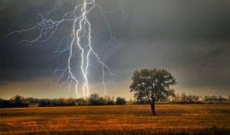 Wenn es blitzt und donnert: Tipps zum Verhalten bei Gewitter
