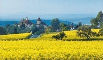Region Zürich: Bio-Bauernhöfe zum Einkaufen und Erleben