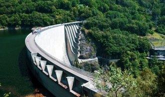 Bedroht Wasserkraft unsere einheimische Artenvielfalt?