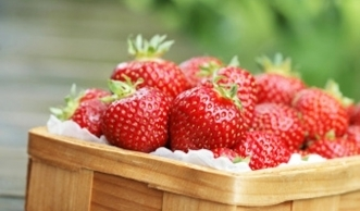 Endlich Erdbeerzeit! Die besten Beeren sind «Bio» & aus der Schweiz