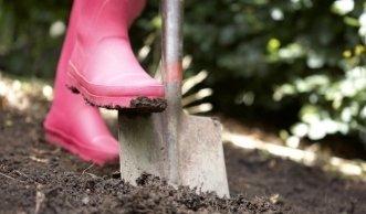 Biogarten im Frühling: jetzt heisst es Lockern, Düngen, Pflanzen