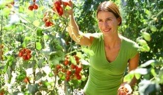 Regionale Bioprodukte aus der Stadt: so wird das Dach zum Garten