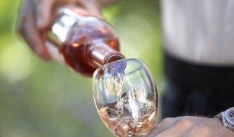 Bioweine in der Schweiz: Der nachhaltige und gesunde Weingenuss