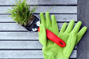 Winter adé: So starten Sie den Frühjahrsputz im Biogarten