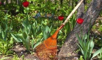 rosen schneiden im herbst und winterfest machen. Black Bedroom Furniture Sets. Home Design Ideas