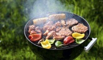 Grillmeister: ökologisch und gesund grillieren mit Holzkohle-, Elektro- und Gasgrill
