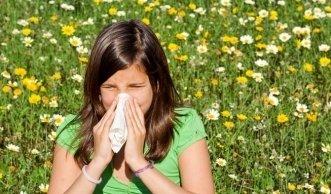 Kreuzallergie: Wenn Pollenallergiker auf Lebensmittel reagieren