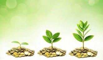 Wie umweltfreundlich sind nachhaltige Geldanlagen?