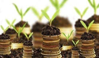 Markt für nachhaltige Geldanlagen wächst weiter