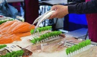Nachhaltiger Fisch: Bio-Fisch frisch auf den Tisch