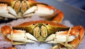 Einkaufs-Ratgeber für Fisch und Meeresfrüchte