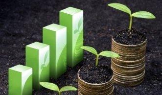 Wachstum nachhaltiger Anlagen trotz stagnierendem Fondsmarkt