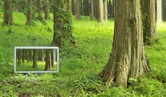 Für Sie getestet: Energieeffiziente Fernseher