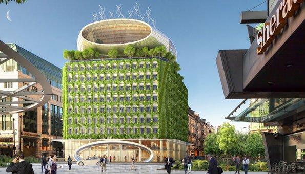 Ökologisch bauen: Aus einem Betonklotz wird eine grüne Oase