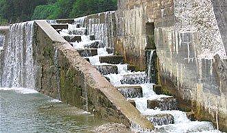 Fischtreppe am Rhein wird für Lachse zur tödlichen Sackgasse