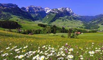 Die Schweiz hat ihre natürlichen Ressourcen aufgebraucht