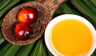 Deklarationspflicht für Palmöl ab 2016