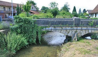 Schmutzige Gewässer: Schweizer Flüsse sind voller Pestizide