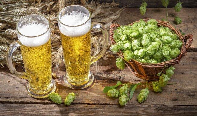 Bio-Bier garantiert Verzicht auf künstliche Zusätze