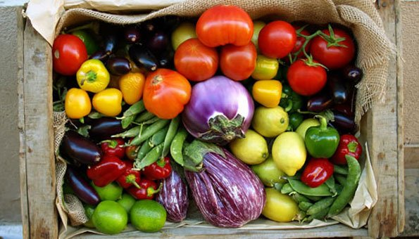 Bio-Lebensmittel: Gut für Mensch und Natur