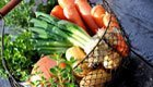 Rezepte für eine gesunde und nachhaltige Ernährung