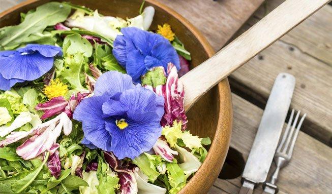Feine Farbtupfer: Wie essbare Blumen Gerichte aufpeppen