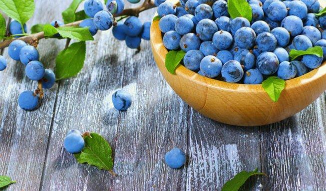 Herbstgemüse und Herbstfrüchte: Die bunte Vielfalt der Saison