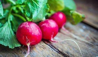 Weshalb Sie unbedingt öfter Radieschen essen sollten