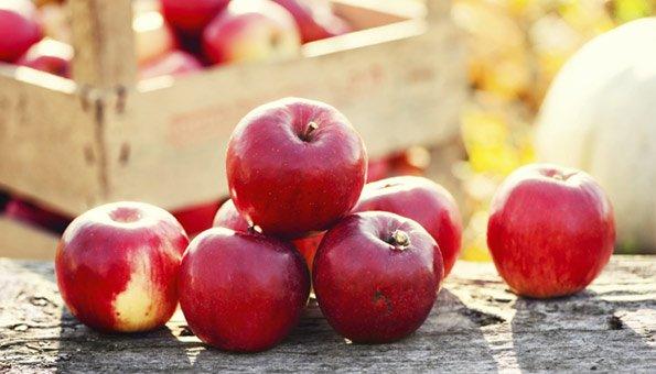 Äpfel und Birnen sind Vitaminbringer im Winter.