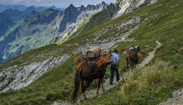 Genusswanderungen der Schweiz: Die besten von Fondue bis Whisky
