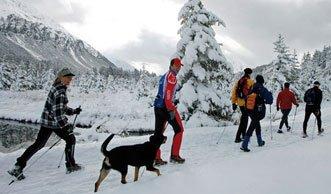 Die schönsten Winterwanderwege der Schweiz