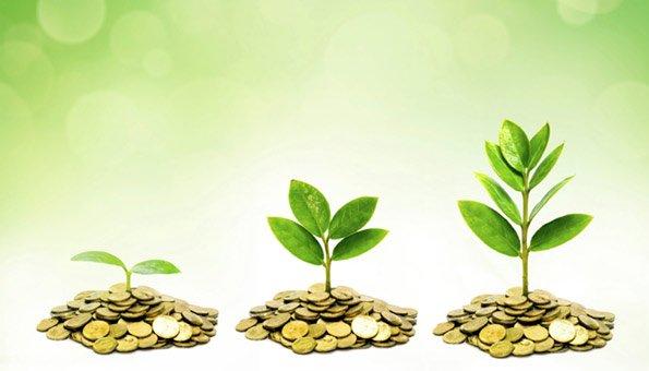 Effiziente Investitionen helfen  Natur und Umwelt.