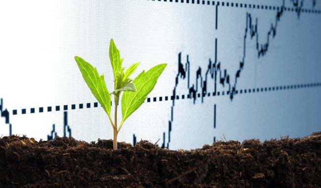 Nachhaltige Investments: Mehr als ein Modetrend