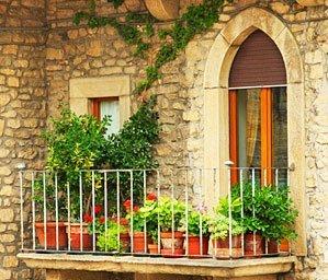balkonpflanzen richtig berwintern im haus. Black Bedroom Furniture Sets. Home Design Ideas