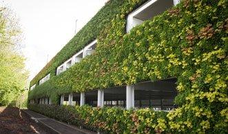 Grüner Rekord: Parkhaus hat die grösste Pflanzenwand Europas