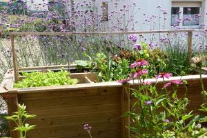 Wie du ein Hochbeet für den Garten oder Balkon selber baust