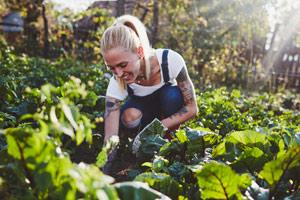 Gärtnern in Zeiten des Klimawandels: 11 Tipps vom Profi