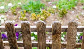 Streit am Gartenzaun: Immer öfter Zoff im Schrebergarten