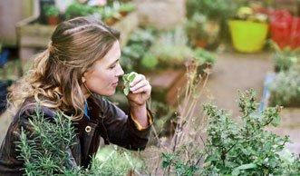 Urban Gardening: Werden Sie zum Stadtgärtner